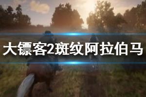 《荒野大镖客2》斑纹阿拉伯马怎么抓 红色阿拉伯马捕抓方法视频