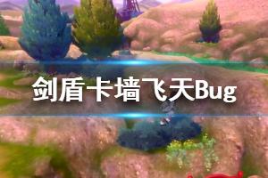 《宝可梦剑盾》卡墙飞天Bug视频分享 飞天bug怎么触发?
