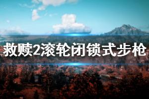 《荒野大镖客2》滚轮闭锁式步枪玩法技巧说明 滚轮闭锁式步枪数据评测介绍