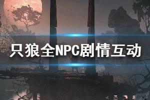 《只狼影逝二度》npc支线剧情汇总 全npc互动剧情攻略