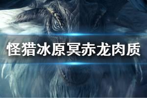 《怪物猎人世界冰原》冥赤龙肉质分析 冥赤龙怎么打