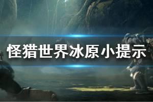 《怪物猎人世界冰原》小提示分享 游戏要注意什么