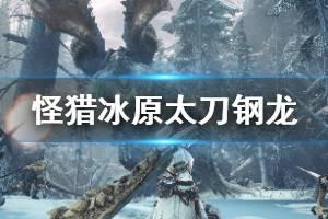 《怪物猎人世界冰原》钢龙太刀怎么打 太刀击杀钢龙方法一览