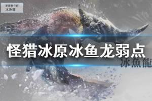 《怪物猎人世界冰原》冰鱼龙弱点一览 冰鱼龙打法技巧介绍