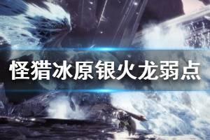 《怪物猎人世界冰原》银火龙弱点属性介绍 银火龙弱什么