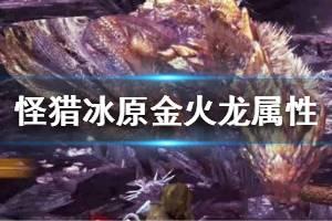 《怪物猎人世界冰原》金火龙属性弱点详解 金火龙弱什么属性