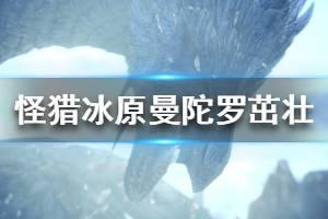 《怪物猎人世界冰原》曼陀罗茁壮属性效果详解 曼陀罗茁壮强度怎么样