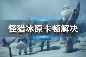《怪物猎人世界冰原》游戏卡怎么办 游戏卡顿解决方法介绍