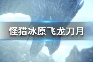 《怪物猎人世界冰原》飞龙刀月属性怎么样 飞龙刀月图鉴属性介绍