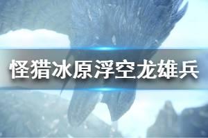 《怪物猎人世界冰原》浮空龙雄兵属性怎么样 浮空龙雄兵属性效果介绍