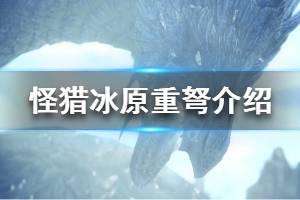 《怪物猎人世界冰原》重弩新添加了什么 重弩添加要素介绍