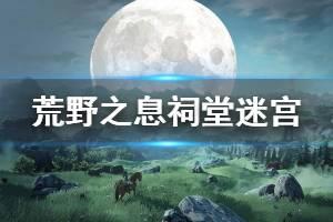 《塞尔达传说:野之息》祠堂迷宫玩法技巧