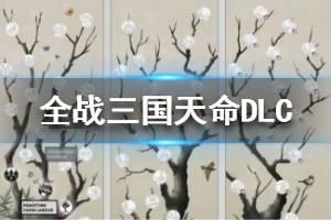 《全面战争三国》天命DLC黄巾阵营试玩视频 黄巾势力怎么样?