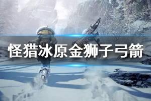 《怪物猎人世界冰原》金狮子弓箭怎么配 金狮子弓箭配装推荐