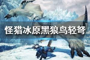 《怪物猎人世界冰原》黑狼鸟轻弩怎么配装 黑狼鸟轻弩配装推荐分享