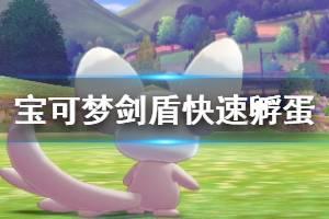 《宝可梦剑盾》新手如何快速孵蛋 快速孵蛋技巧推荐