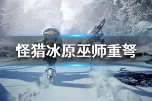 《怪物猎人世界冰原》巫师重弩珠子怎么搭配 巫师重弩玩法技巧介绍