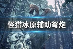 《怪物猎人世界冰原》辅助弩炮怎么玩 辅助弩炮衣装选择推荐