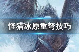 《怪物猎人世界冰原》巫师重弩玩法小技巧分享 牧师轻弩输出技巧说明