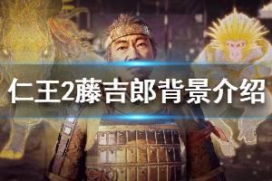《仁王2》藤吉郎图鉴一览 藤吉郎背景介绍