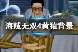 《海贼无双4》黄猿背景资料介绍 波鲁萨利诺动作技能一览