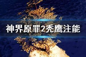 《神界原罪2》秃鹰注能效果怎么样 秃鹰注能效果介绍
