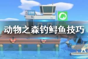 《集合啦动物森友会》鲟鱼怎么钓?钓鲟鱼技巧分享