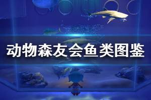 《集合啦动物森友会》鱼类图鉴汇总大全 全鱼类属性价格分享一览