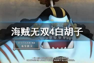 海贼无双4最厉害的角色图片