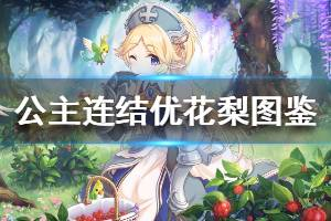 《公主连结》优花梨怎么样 公主连接圣骑由加莉技能专武介绍