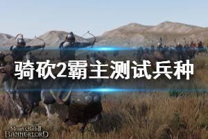 《骑马与砍杀2》什么兵种最强 测试兵种方法介绍