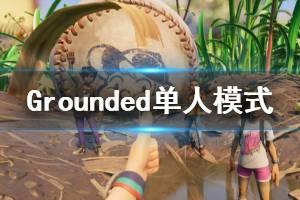 《Grounded》单人模式演示视频 单人模式怎么样?
