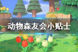 《集合啦动物森友会》小贴士分享 游戏中有什么技巧