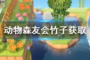 《集合啦动物森友会》竹子怎么获得 竹子获取方法介绍