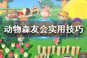 《集合啦动物森友会》实用技巧分享 游戏有什么小技巧