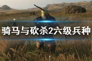 《骑马与砍杀2》六级兵种谁最强?各国6级兵战斗力排行与简单评价