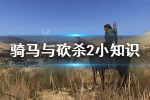 《骑马与砍杀2》小知识分享 游戏中有什么小知识