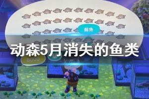 《集合啦动物森友会》5月消失的鱼类有哪些 5月消失鱼类一览