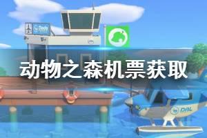 《集合啦动物森友会》机票怎么获得 机票获取方法一览