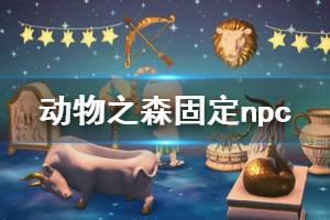 《集合啦动物森友会》npc怎么固定 npc固定方法介绍