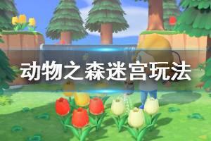 《集合啦动物森友会》迷宫怎么玩 迷宫玩法分享