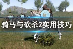 《骑马与砍杀2》实用技巧分享 游戏有哪些技巧