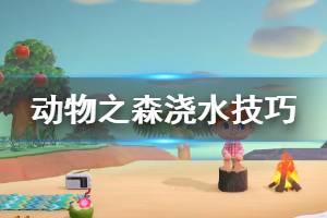 《集合啦动物森友会》浇水有什么技巧?浇水技巧答疑