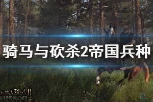 《骑马与砍杀2》帝国兵种详解 帝国兵种战术打法介绍