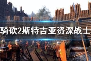 《骑马与砍杀2》斯特吉亚资深战士厉害吗 斯特吉亚战士强度分析