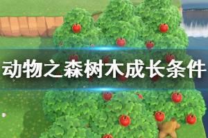 《集合啦动物森友会》树木如何成长 树木成长条件介绍