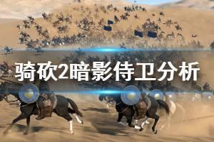 《骑马与砍杀2》暗影侍卫怎么用 暗影宫廷侍卫强度分析