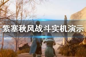 《紫塞秋风》战斗实机演示视频分享 战斗画面怎么样?