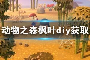 《集合啦动物森友会》枫叶diy怎么获得 枫叶diy获取方法介绍