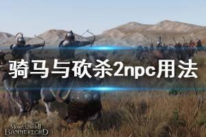 《骑马与砍杀2》npc有什么用 npc用法介绍